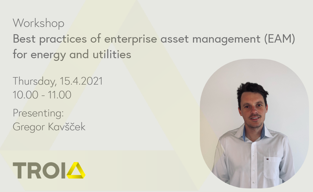 Workshop: Best practices of enterprise asset management for energy and utilities